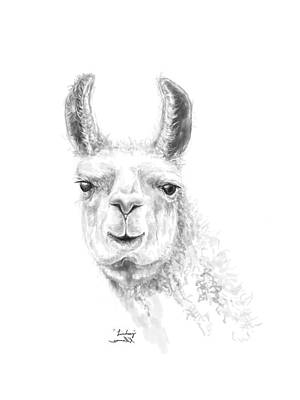 Animals Drawings - Linsdey by K Llamas