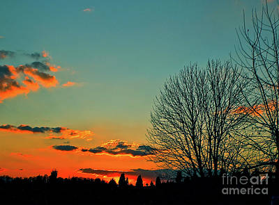 Art Print featuring the photograph Linvilla Sunset by Sandy Moulder