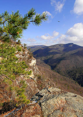 Linville Gorge Original by Alan Lenk