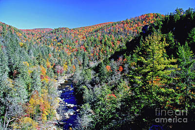 Photograph - Linville Gorge Wilderness by Kevin McCarthy