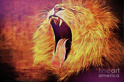 Photograph - Lion 17918 by Ray Shrewsberry