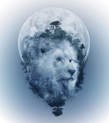 Abstract Landscape Royalty-Free and Rights-Managed Images - Lion 2 by Bekim Art
