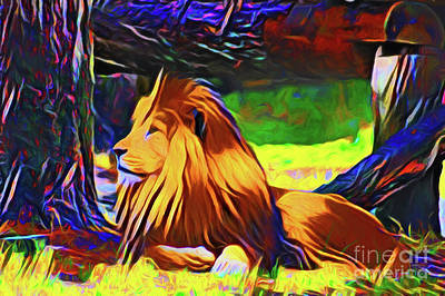 Photograph - Lion 20218 by Ray Shrewsberry