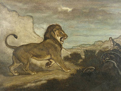 Drawing - Lion And Python by Antoine-Louis Barye