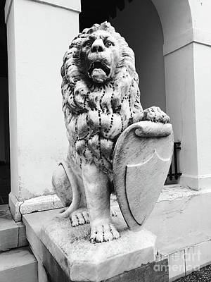 Photograph - Lion And The Shield  by Michael Krek