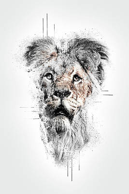 Digital Art - Lion by Anja Wessels