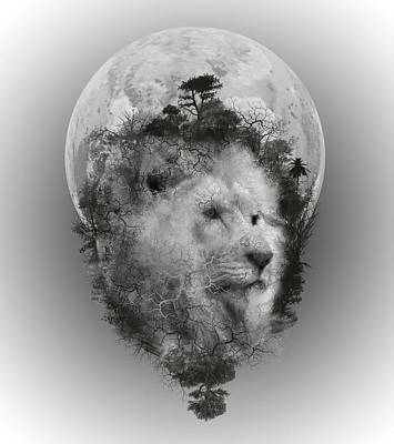 Abstract Landscape Royalty-Free and Rights-Managed Images - Lion by Bekim Art