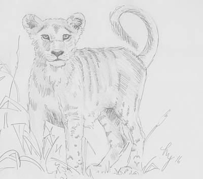 Drawing - Lion Cub Pencil Drawing - I See Something by Mike Jory