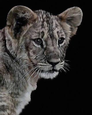 Lion Digital Art - Lion Cub Portrait by Ernie Echols