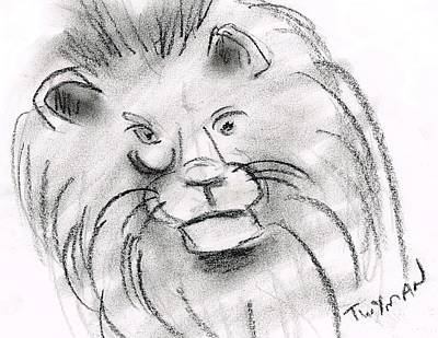 Animals Drawings - Lion by Dan Twyman