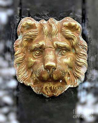 Photograph - Lion Face Door Knocker by Janice Drew