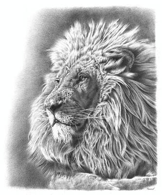 African Animals Drawing - Lion King by Remrov