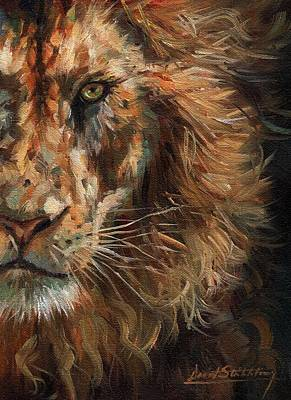 Painting - Lion Face by David Stribbling