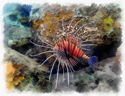 Lionfish Painting - Lion Fish From The Bali Sea by Sergey Lukashin