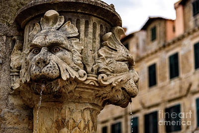 Photograph - Lion Fountain On Dubrovnik Stradun, Dubrovnik, Croatia by Global Light Photography - Nicole Leffer