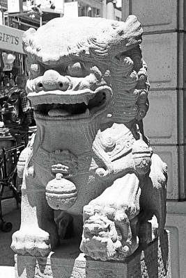 Photograph - Lion Guardian by Shoal Hollingsworth