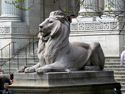 Photograph - Lion Guards Literature by Helen Haw