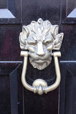 Whimsical Flowers - Lion Head Door Knocker by Lauri Novak