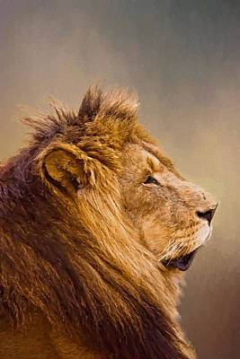 Photograph - Lion Head by Maria Coulson
