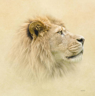 Art Print featuring the photograph Lion II by Roy  McPeak