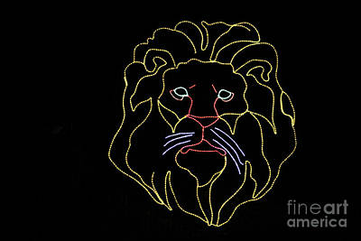 Photograph - Lion In Lights by Steven Parker