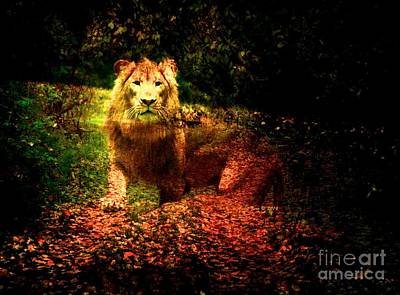 Photograph - Lion In The Wilderness by Annie Zeno