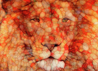 Abstract Digital Painting - Lion  by Jack Zulli