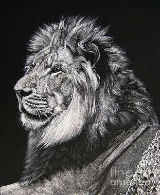Scratchboard Painting - Lion King by Sabine Lackner