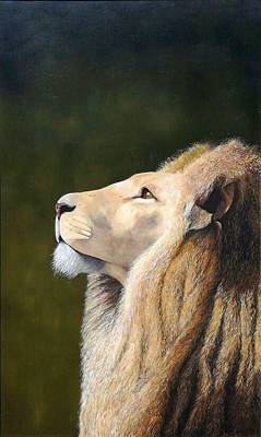 Lion Looking Up Original by LJ Brendan Fourie