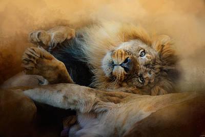 Photograph - Lion Love 2 by Jai Johnson