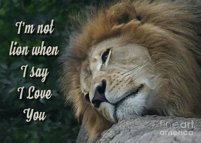Digital Art - Lion Love You by JH Designs