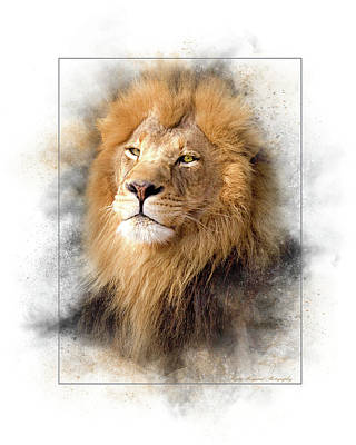 Photograph - Lion by Marty Maynard