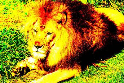 Lion Of Judah Original
