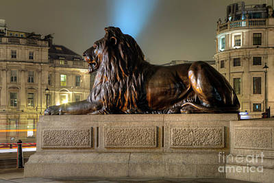 Photograph - Lion On Guard  by Rick Mann