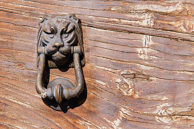 Photograph - Lion On The Door by Michael Blanchette