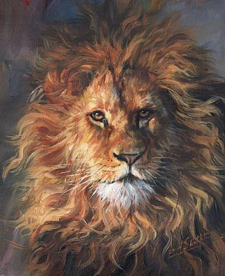 Painting - Lion Portrait by David Stribbling