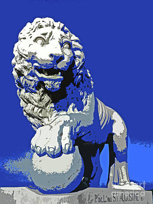 Photograph - Lion Pride by Elizabeth Hoskinson