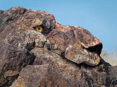 Digital Art - Lion Rock by Rick Mosher