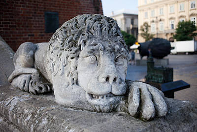 Cracow Photograph - Lion Sculpture At Town Hall Tower In Krakow by Artur Bogacki