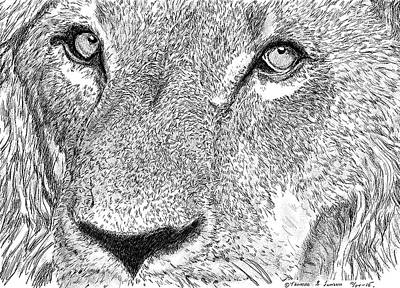 Lion Sketch Art Print