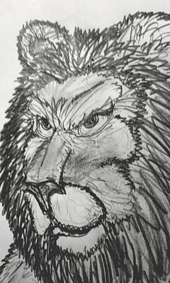 Drawing - Lion Sketch  by Yshua The Painter