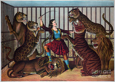 Drawing - Lion Tamer, C1874.  by Granger