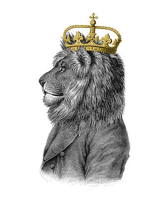 Shower Digital Art - Lion The King Of The Jungle by Madame Memento