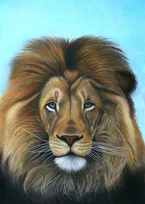 Pastel - Lion - The Majesty by Vishvesh Tadsare