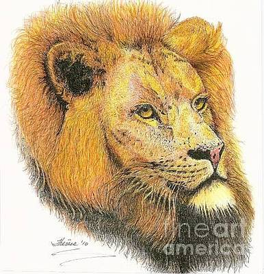 Drawing - Lion by Bill Hubbard
