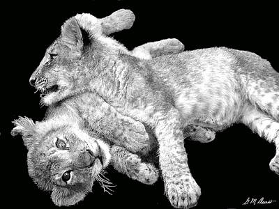 Lion Photograph - Lion Wrestling Bw by Michael Durst