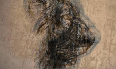 Synesthesia Drawing - Lioness by Arlene Rabinowitz