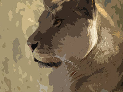 Photograph - Lioness Profile by Laurel Powell