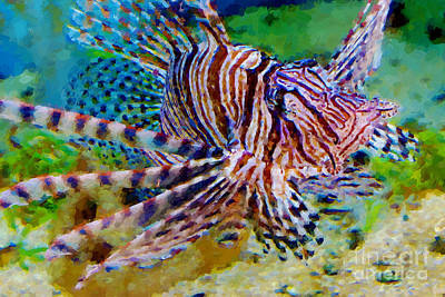 Photograph - Lionfish by Olga Hamilton