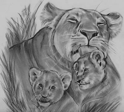 Drawing - Lioness And Her Cubs by Barb Baker